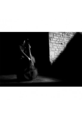 Double bass in the shadow